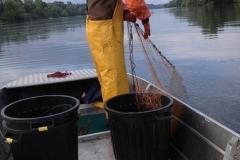 Barco pesca de alumínio (103)
